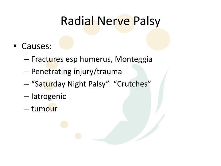 PPT - Radial Nerve Anatomy Episode 1 PowerPoint Presentation - ID ...