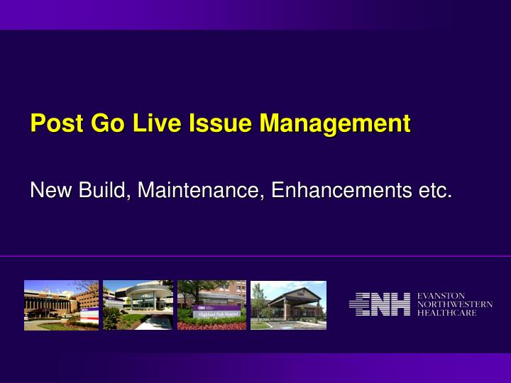 post go live issue management n.
