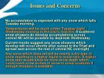 issues and concerns