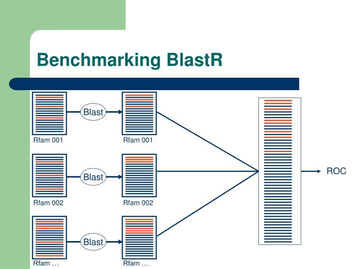 Benchmarking BlastR