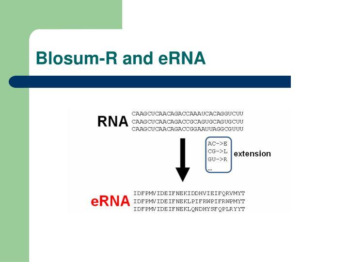 Blosum-R and eRNA