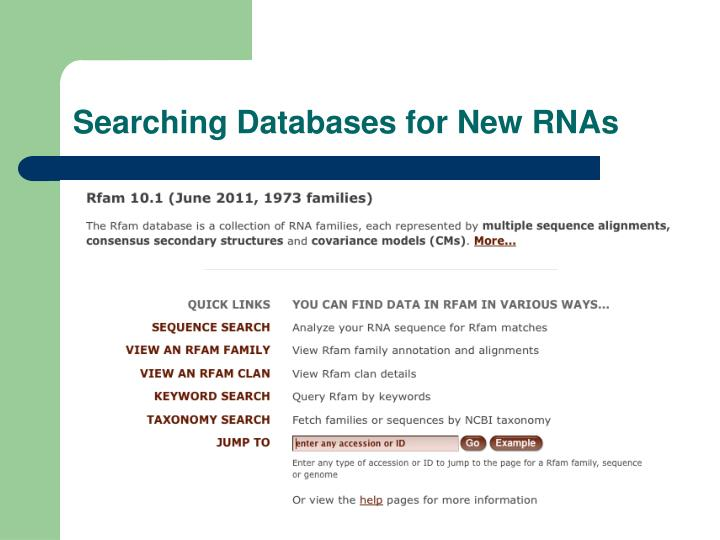 Searching Databases for New RNAs