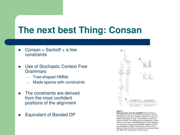 The next best Thing: Consan