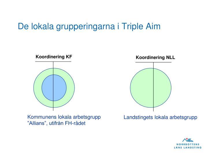 De lokala grupperingarna i Triple Aim
