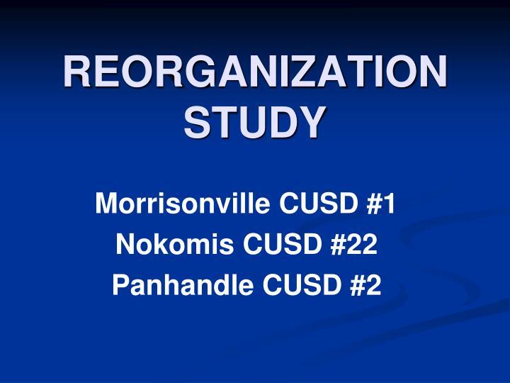 reorganization study n.