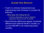 suicide risk behavior
