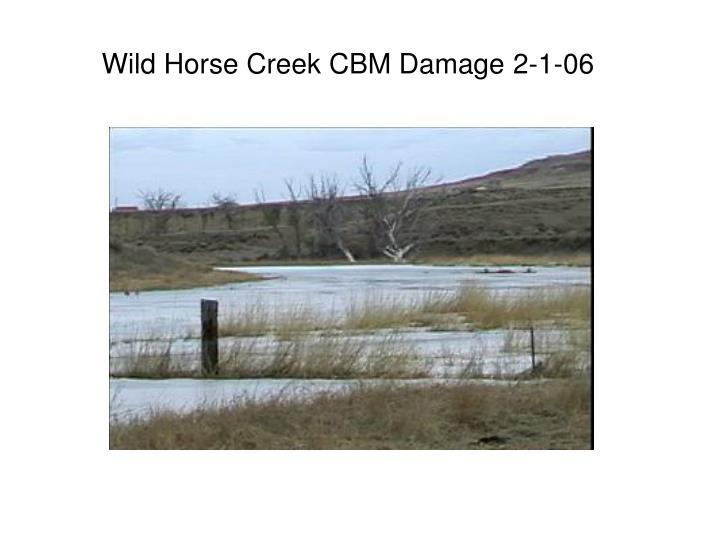 Wild Horse Creek CBM Damage 2-1-06