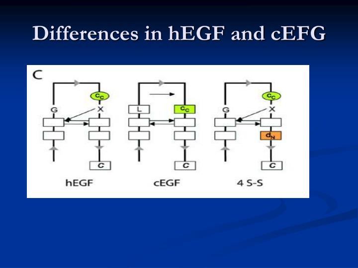 Differences in hEGF and cEFG