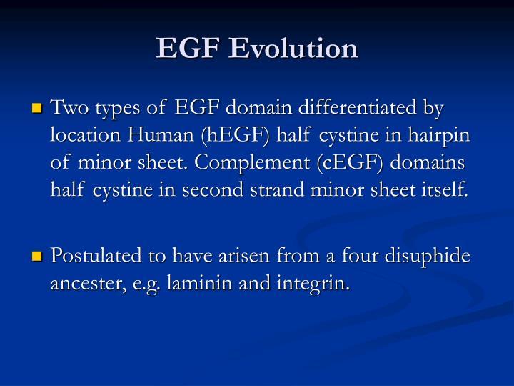 EGF Evolution