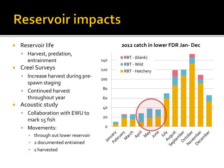 Reservoir impacts