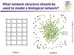 what network structure should be used to model a biological network