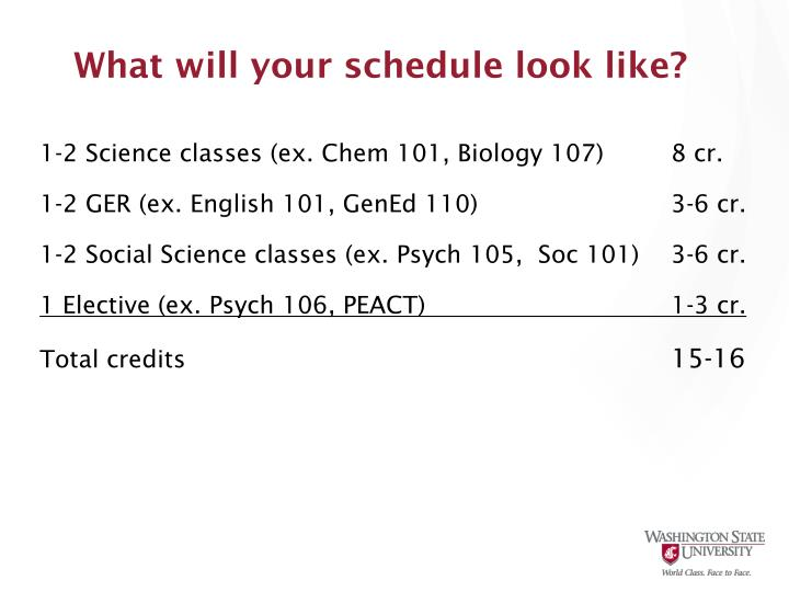 What will your schedule look like?