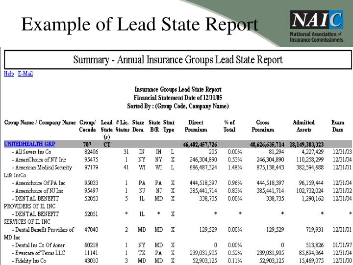 Example of Lead State Report