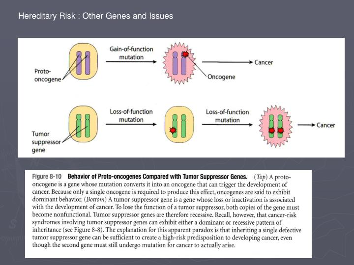 Hereditary Risk : Other Genes and Issues