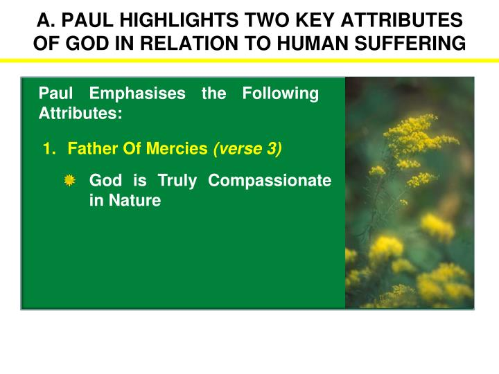 the two categories for the attributes of god Attributes of god lesson 3: god is good have the children find supporting verses for at least one statement from each category have them find at least two.