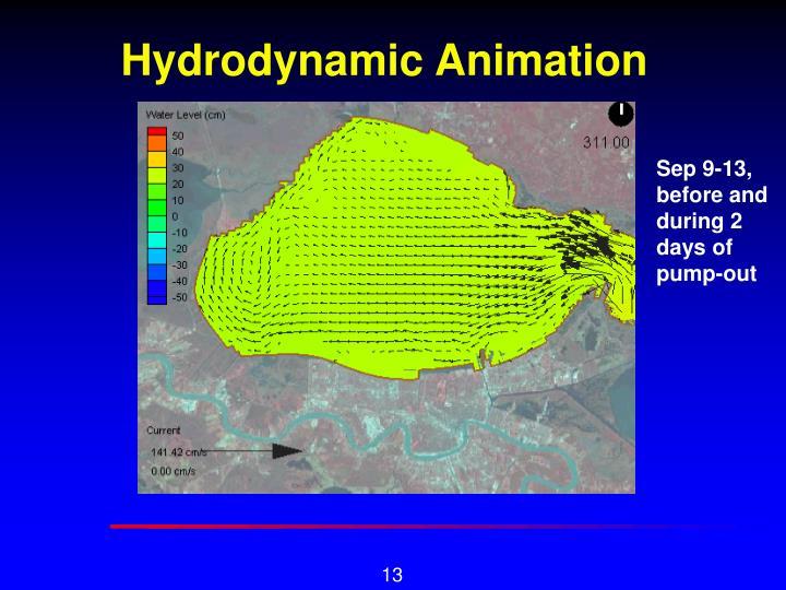 Hydrodynamic Animation
