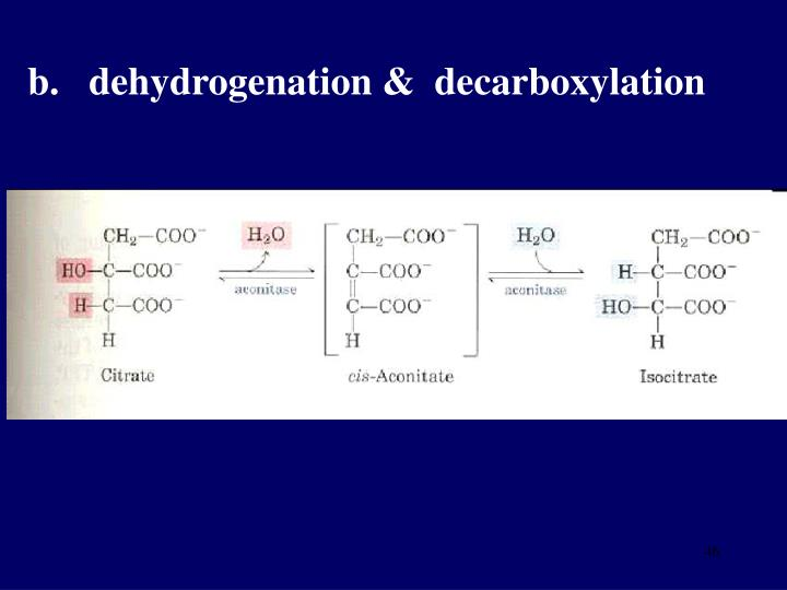 b.   dehydrogenation &  decarboxylation