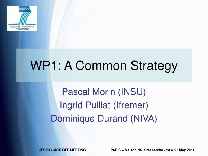 wp1 a common strategy n.