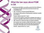 what the law says about fgm in sa