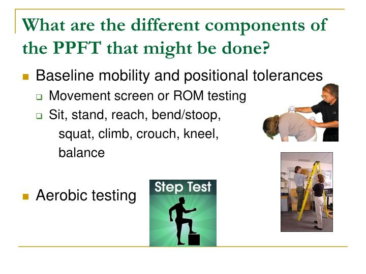 What are the different components of the PPFT that might be done?