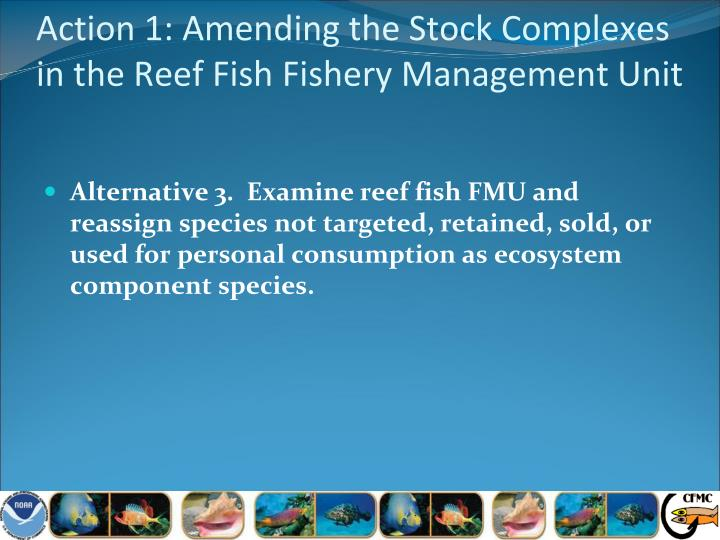 Action 1: Amending the Stock Complexes in the Reef Fish Fishery Management Unit