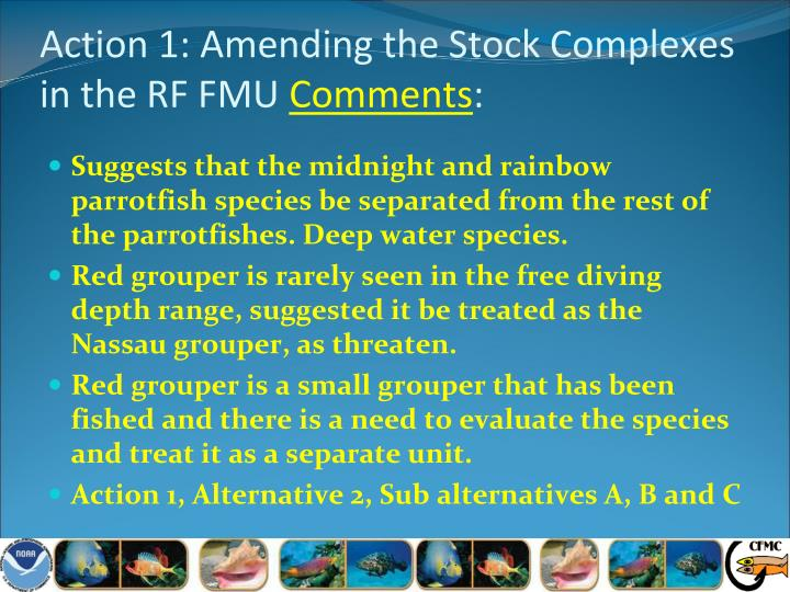 Action 1: Amending the Stock Complexes in the RF FMU