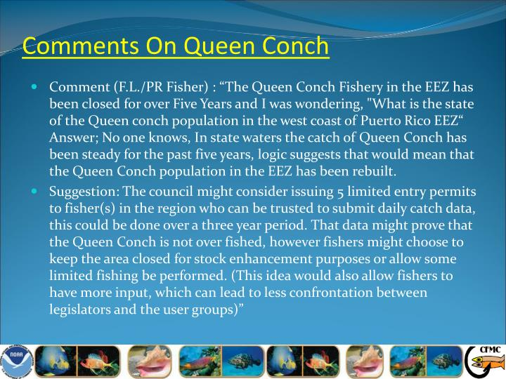 Comments On Queen Conch