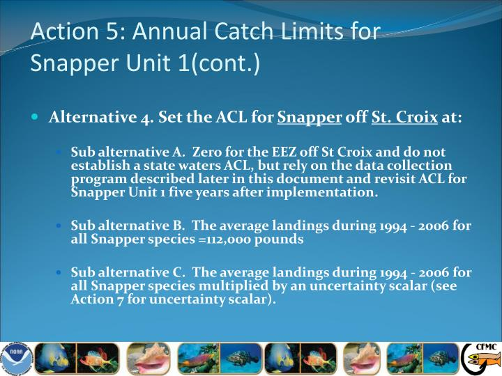 Action 5: Annual Catch Limits for
