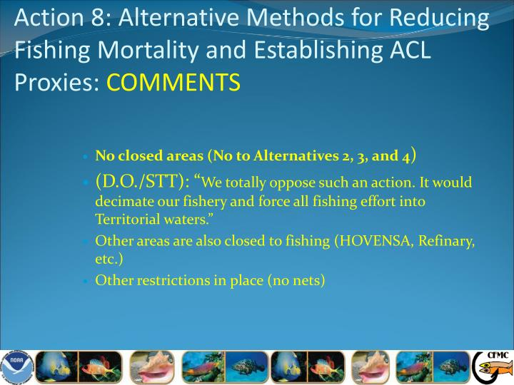 Action 8: Alternative Methods for Reducing Fishing Mortality and Establishing ACL Proxies: