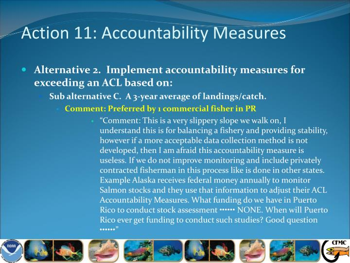 Action 11: Accountability Measures