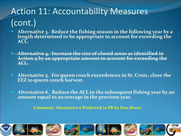 Action 11: Accountability Measures (cont.)