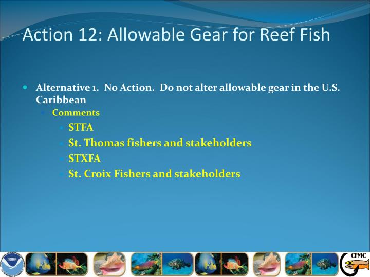 Action 12: Allowable Gear for Reef Fish