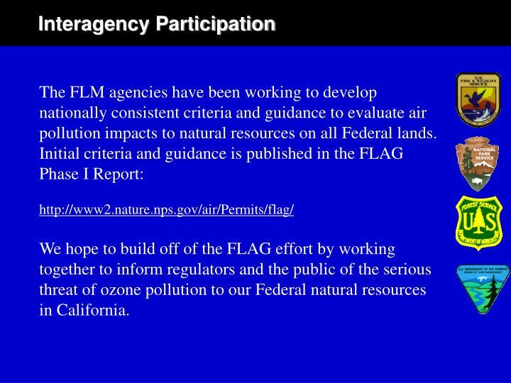 Interagency Participation