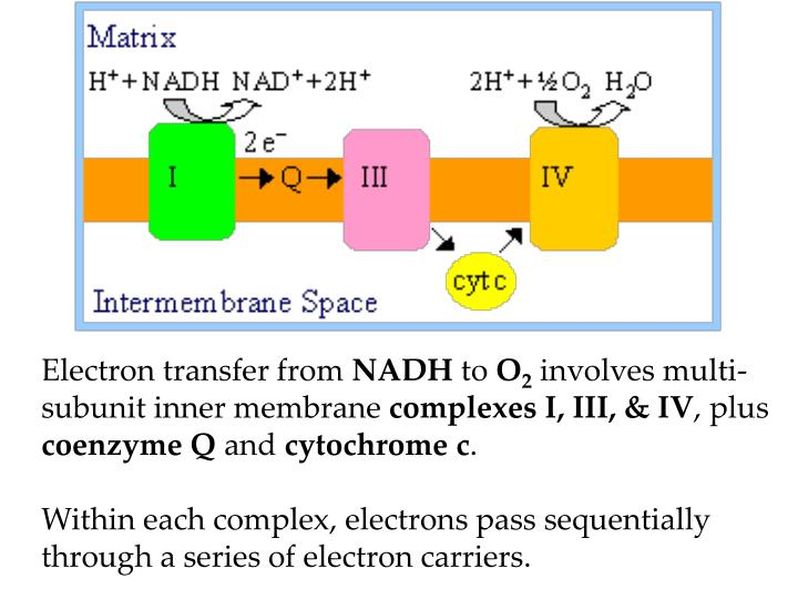 Electron transfer from