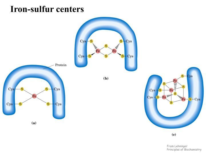 Iron-sulfur centers