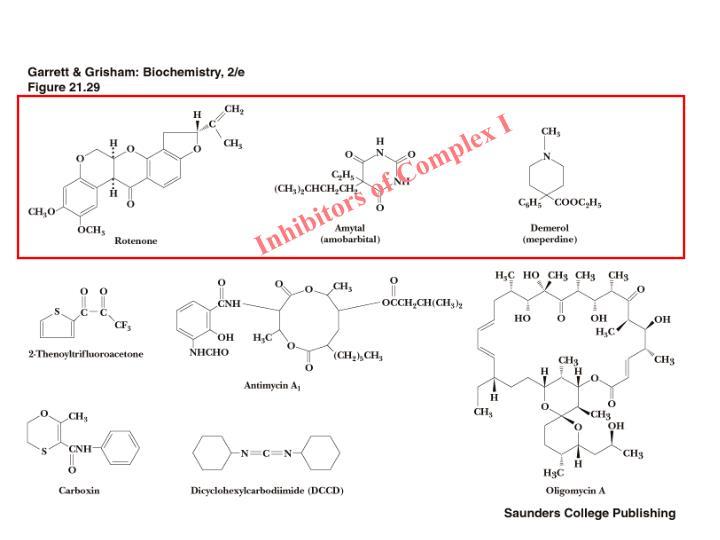 Inhibitors of Complex I