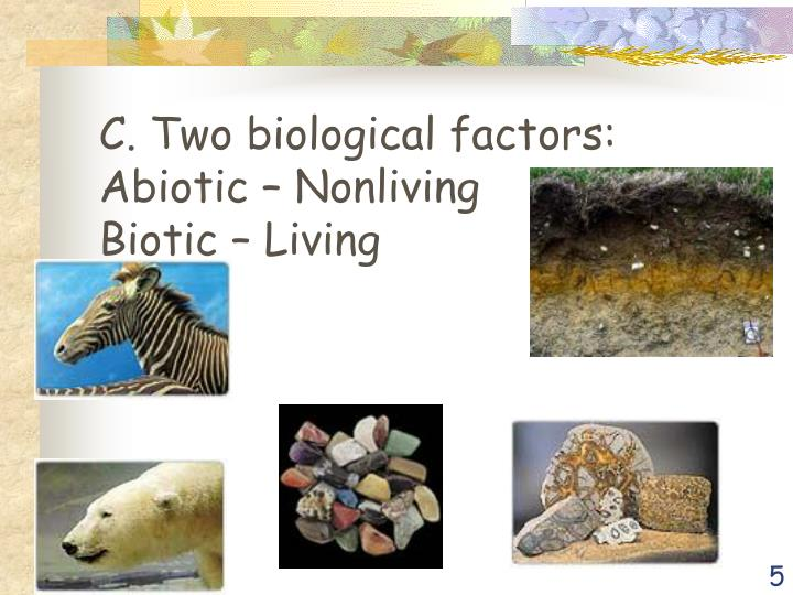 C. Two biological factors:     Abiotic – Nonliving