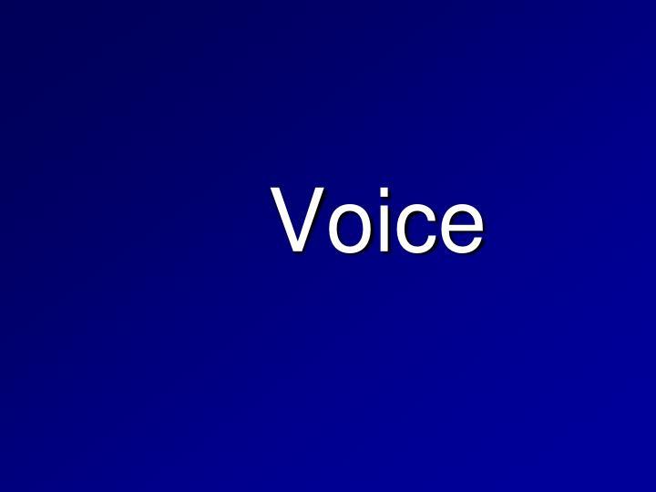 voice n.