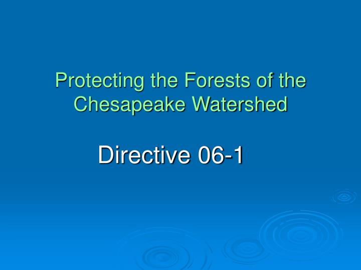 protecting the forests of the chesapeake watershed n.