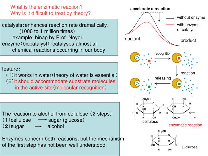 What is the enzimatic reaction?