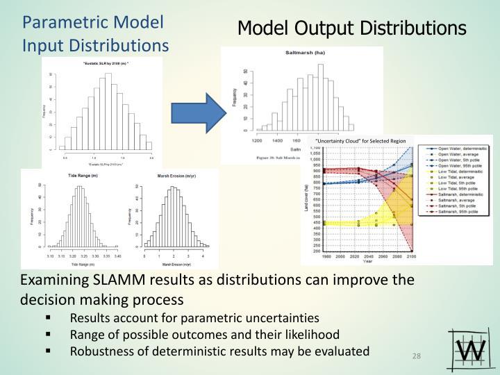 Parametric Model Input Distributions
