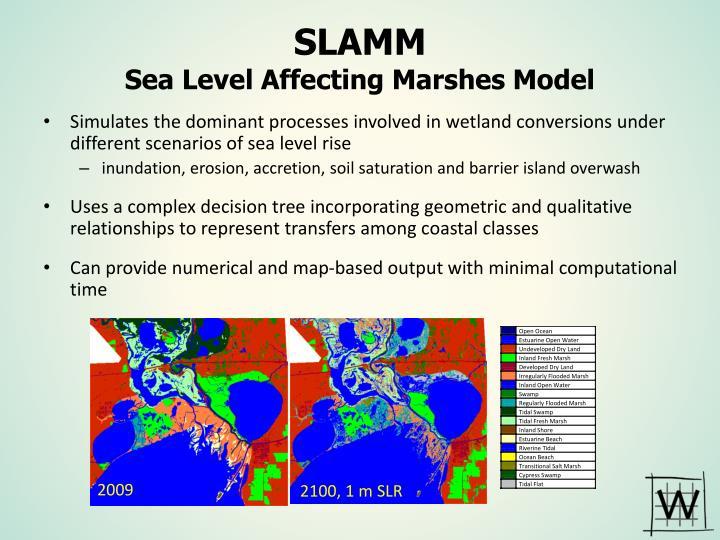 Slamm sea level affecting marshes model