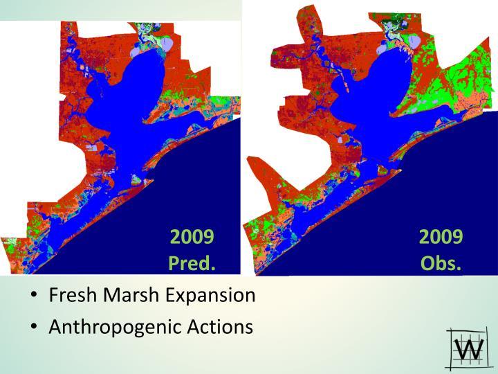 Fresh Marsh Expansion