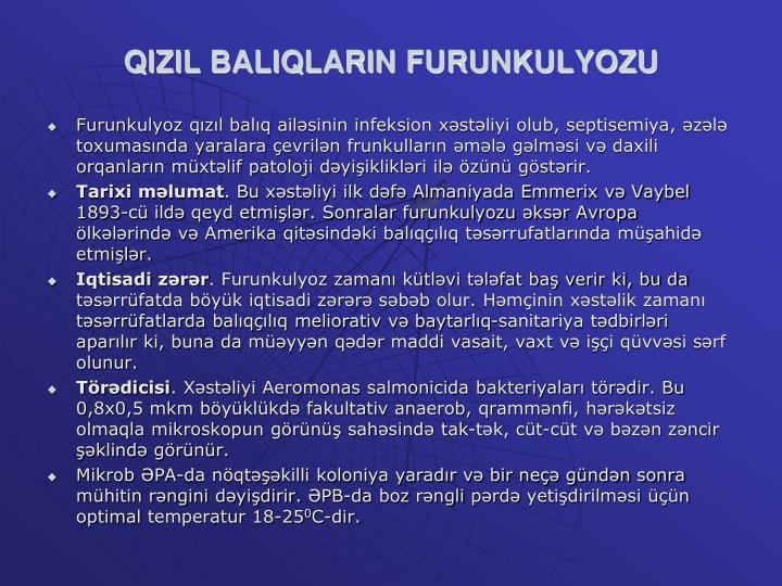 QIZIL BALIQLARIN FURUNKULYOZU
