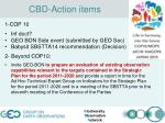 cbd action items