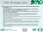 cbd strategic plan1