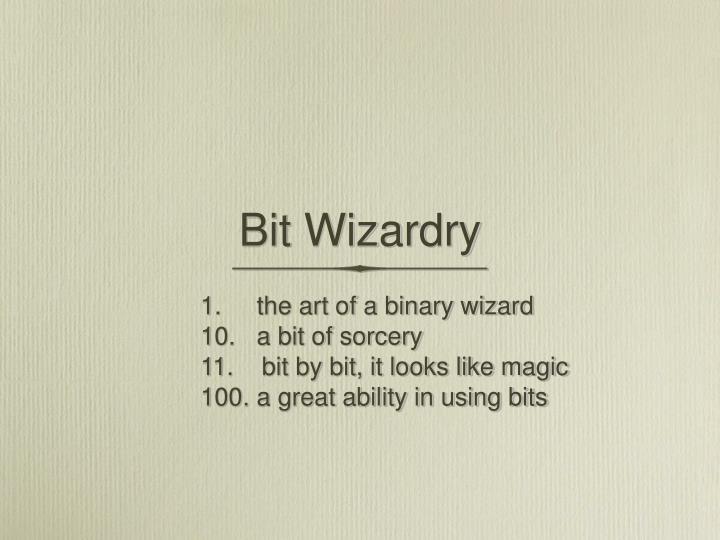 bit wizardry n.