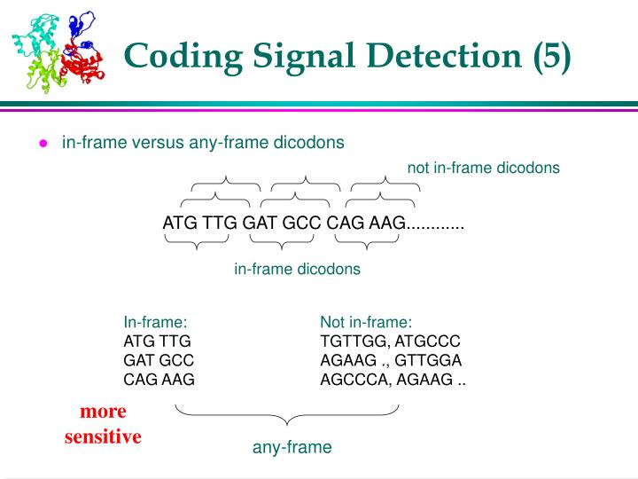 Coding Signal Detection (5)