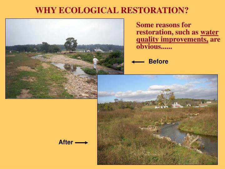 WHY ECOLOGICAL RESTORATION?