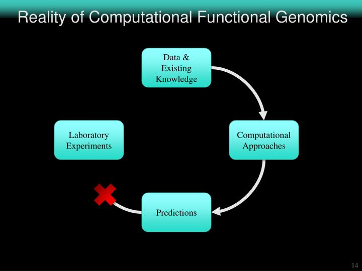 Reality of Computational Functional Genomics